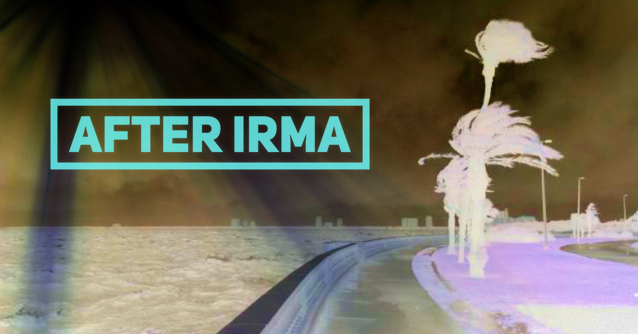 After Irma 002