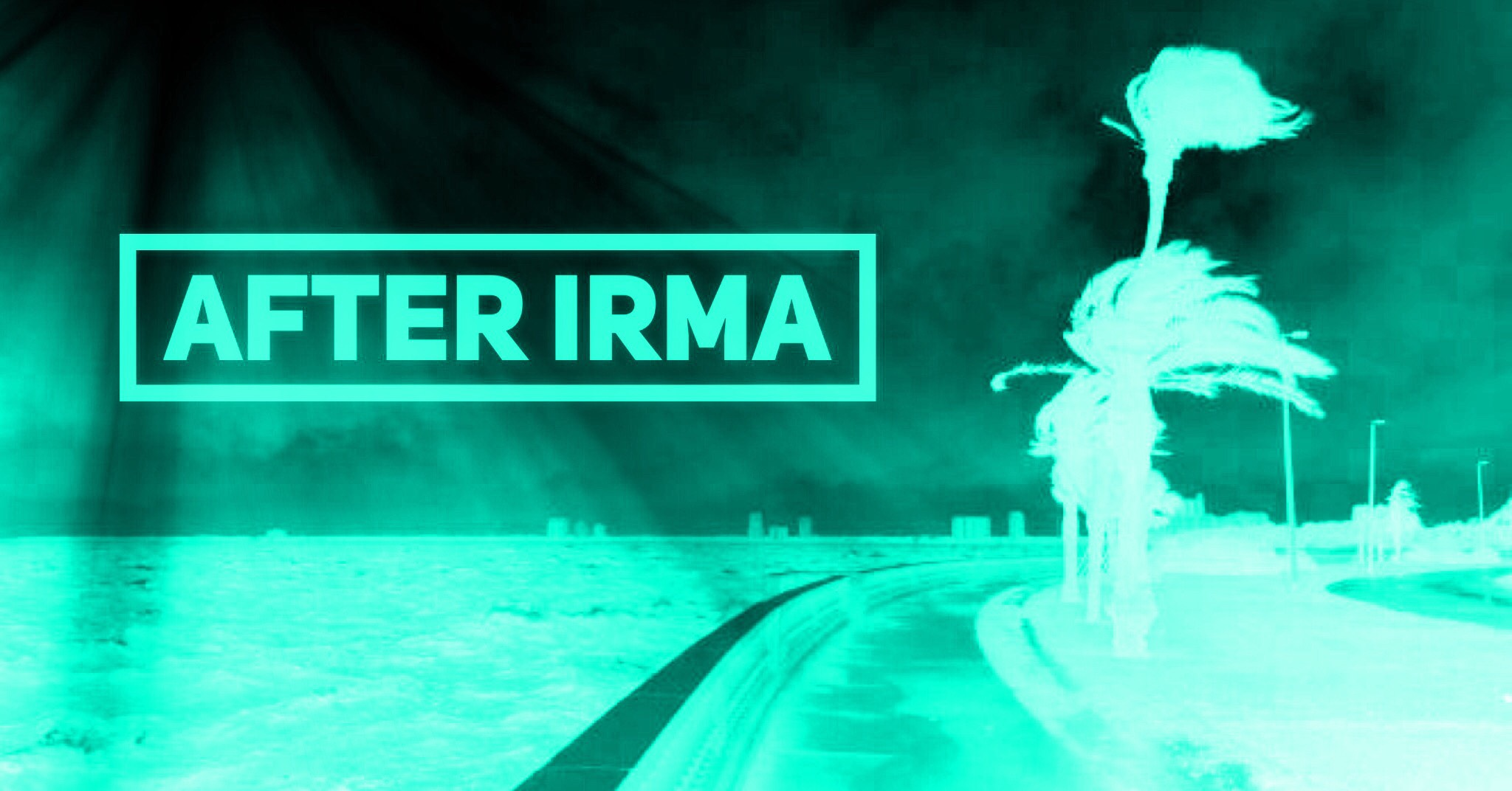 After Irma 003