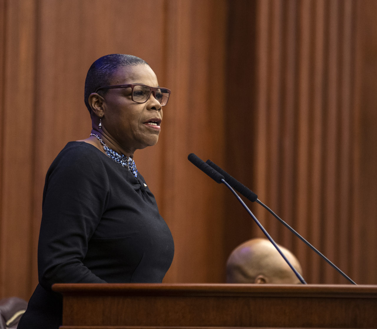 The Florida Senate Democratic caucus met to elect Sen. Audrey Gibson  (D-Jacksonville) as the Democratic leader during the 2019 and 2020 legislative sessions