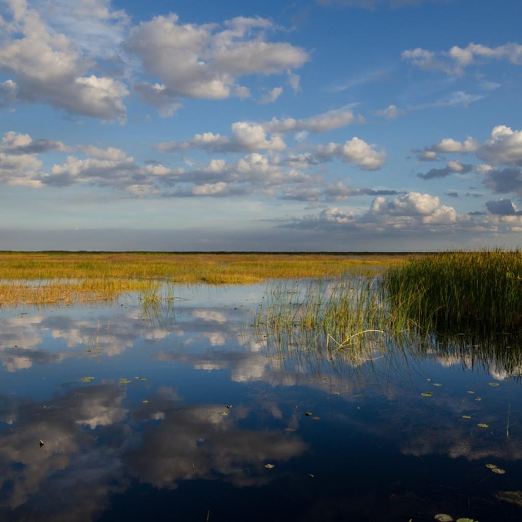 lake-o-image1-1024x1024.jpg
