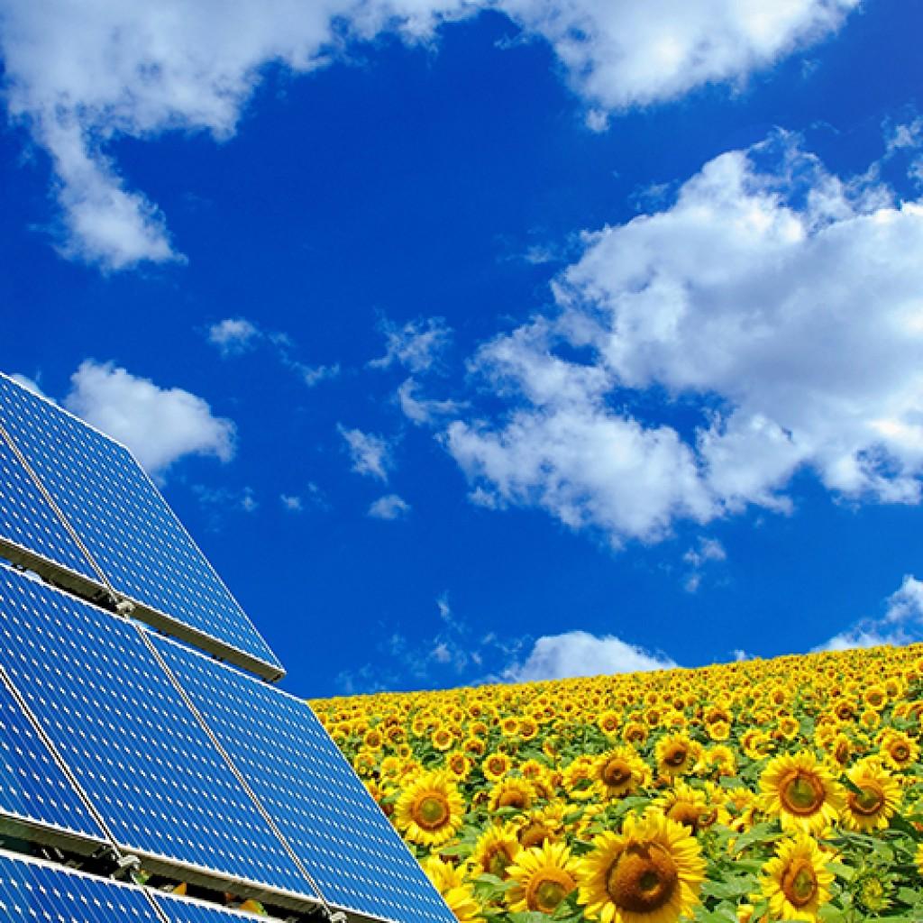 solar-panel-edit-1024x1024.jpg