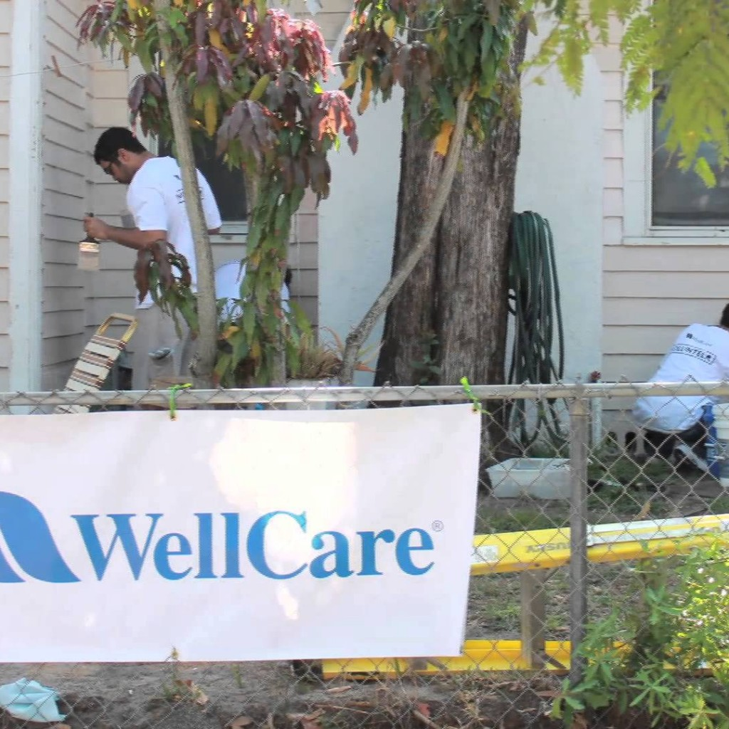 Well care health plans