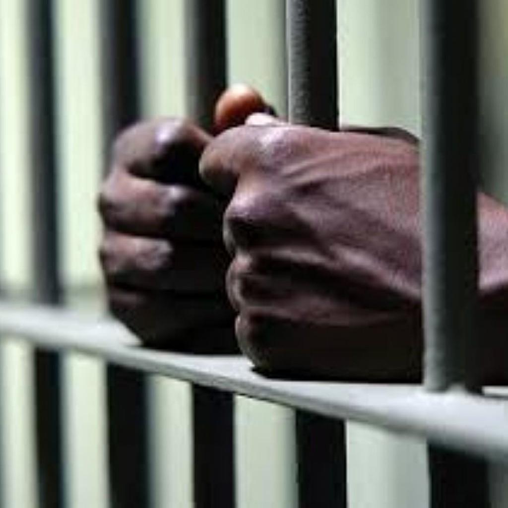 black-arrest-rates-in-Tampa-1024x1024.jpg