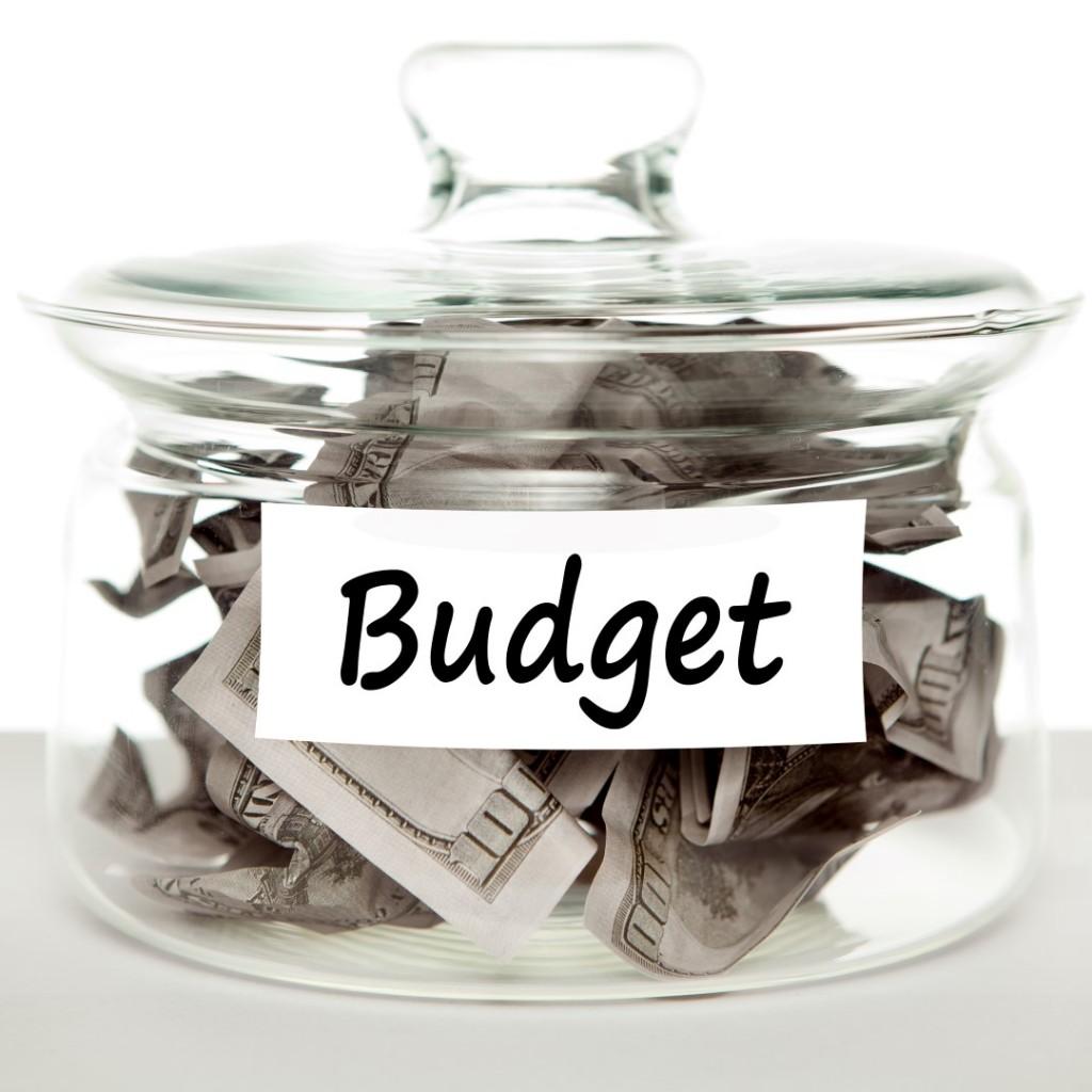budget-surplus-sawgrass-Large-1024x1024.jpg