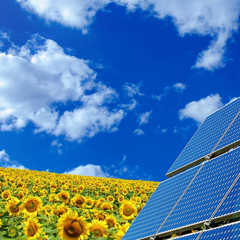 solar-panel edit copy
