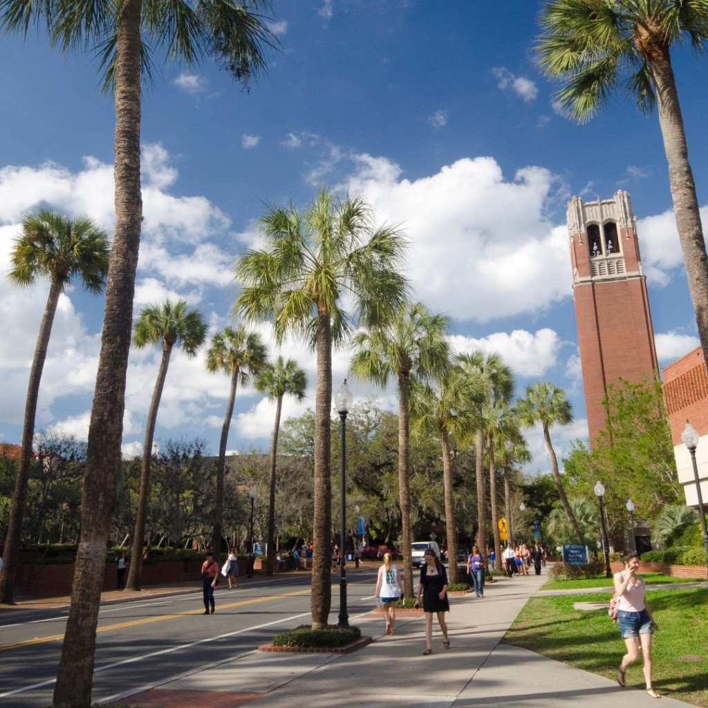 university-of-Florida-Large-1024x1024.jpg