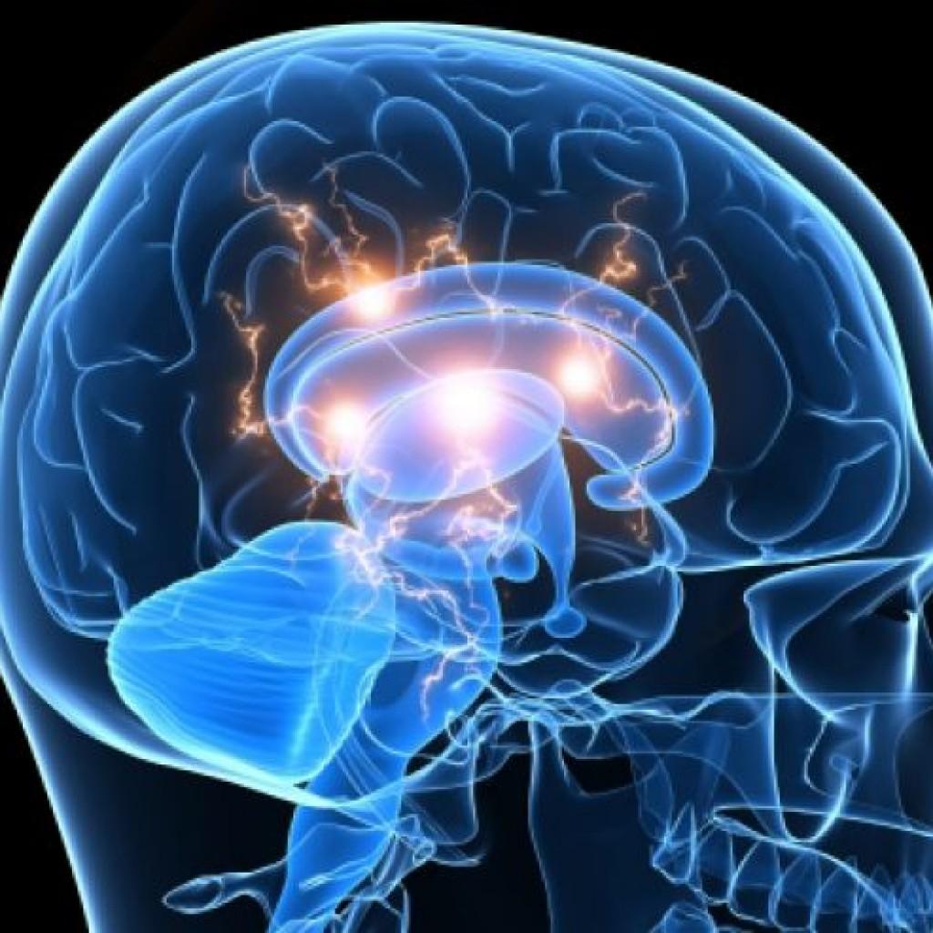 Brain-active-istock-1024x1024.jpg