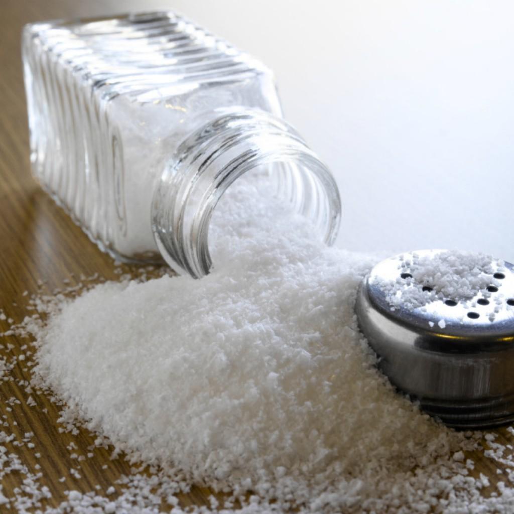 salt-shaker-polling-2-1024x1024.jpg