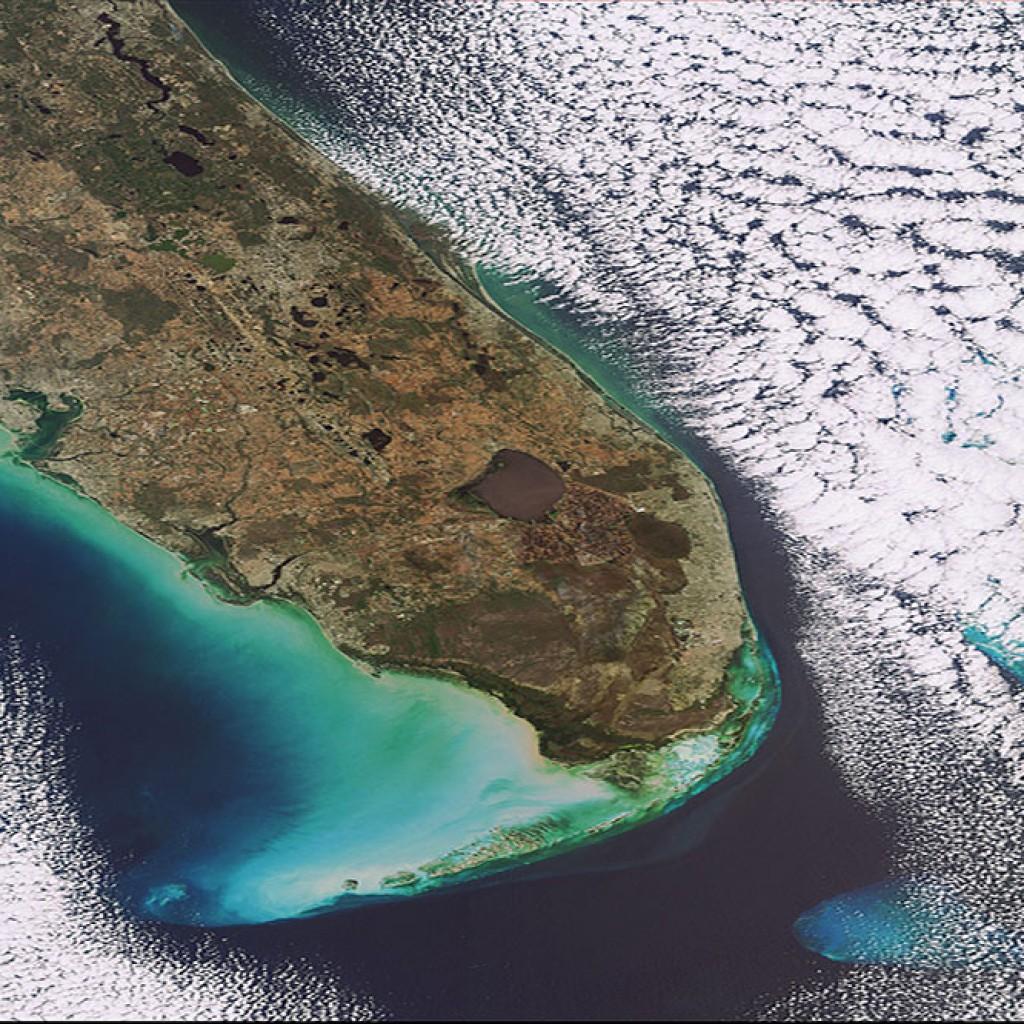 Florida_USA-copy-1024x1024.jpg