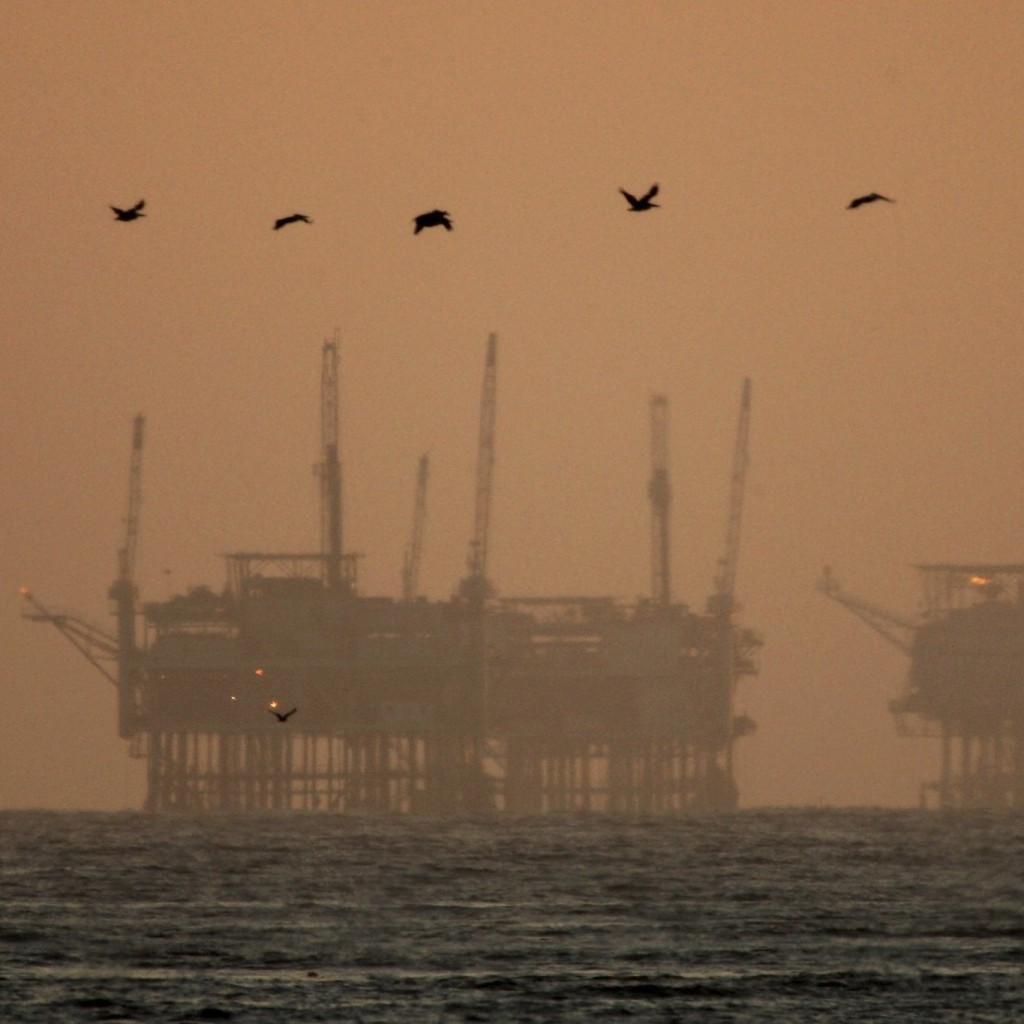 offshore-drilling-florida-coast-1024x1024.jpg