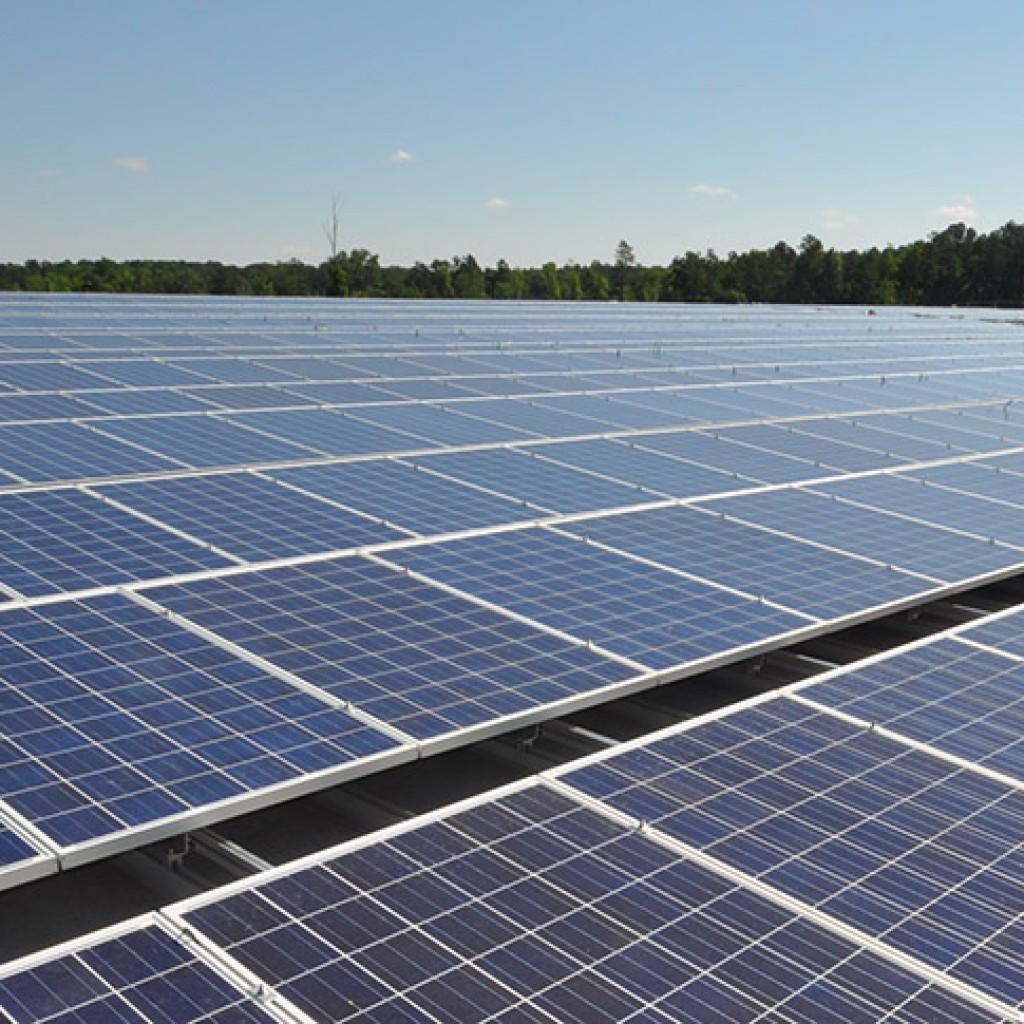 solar-energy-07-15-copy-1024x1024.jpg