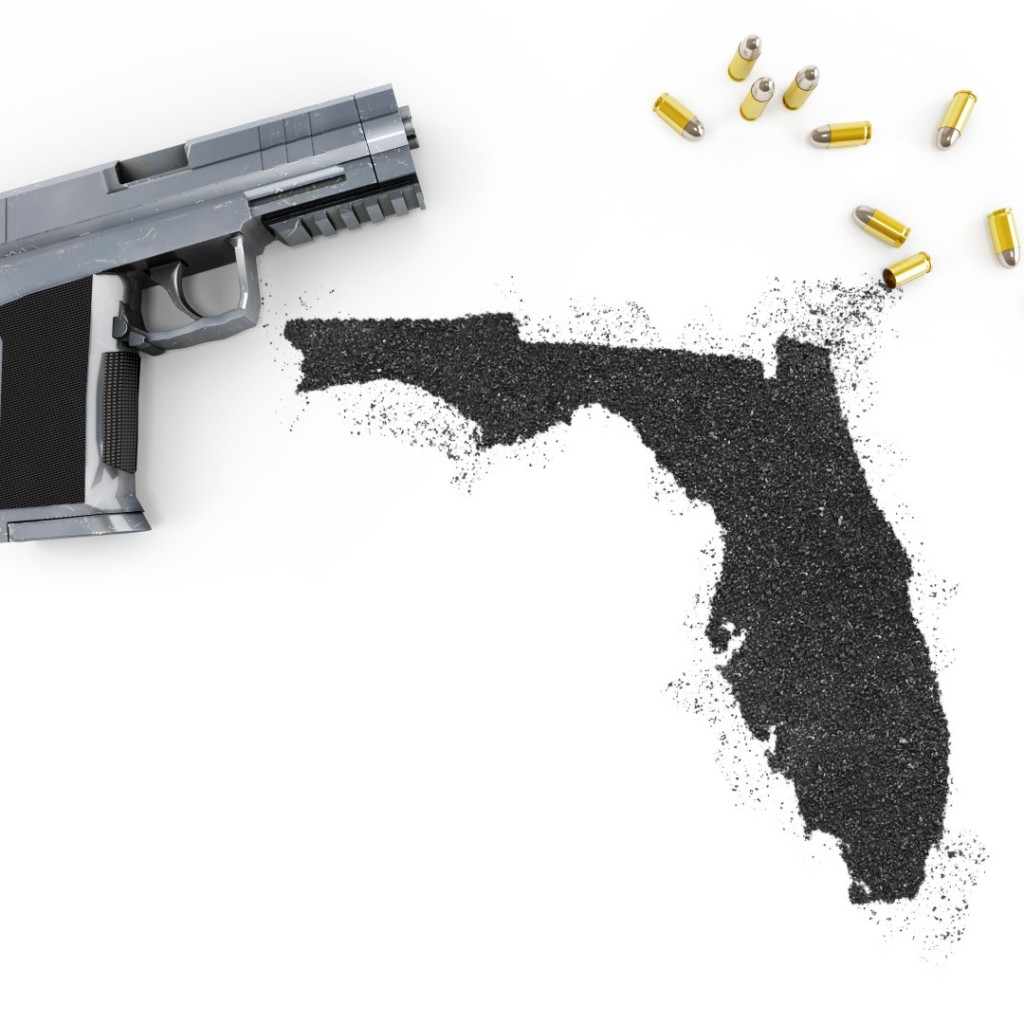 Florida-guns-2-Large-1024x1024.jpg