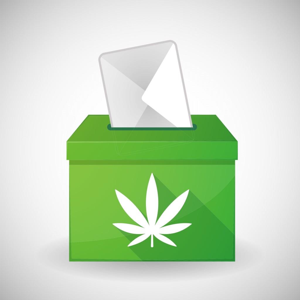 ballotbox_pot