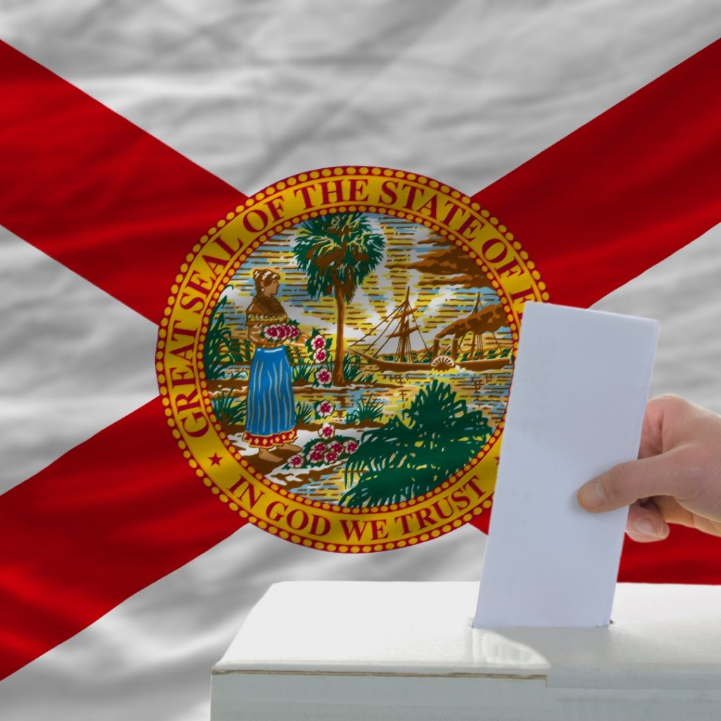 Florida vote (Large)