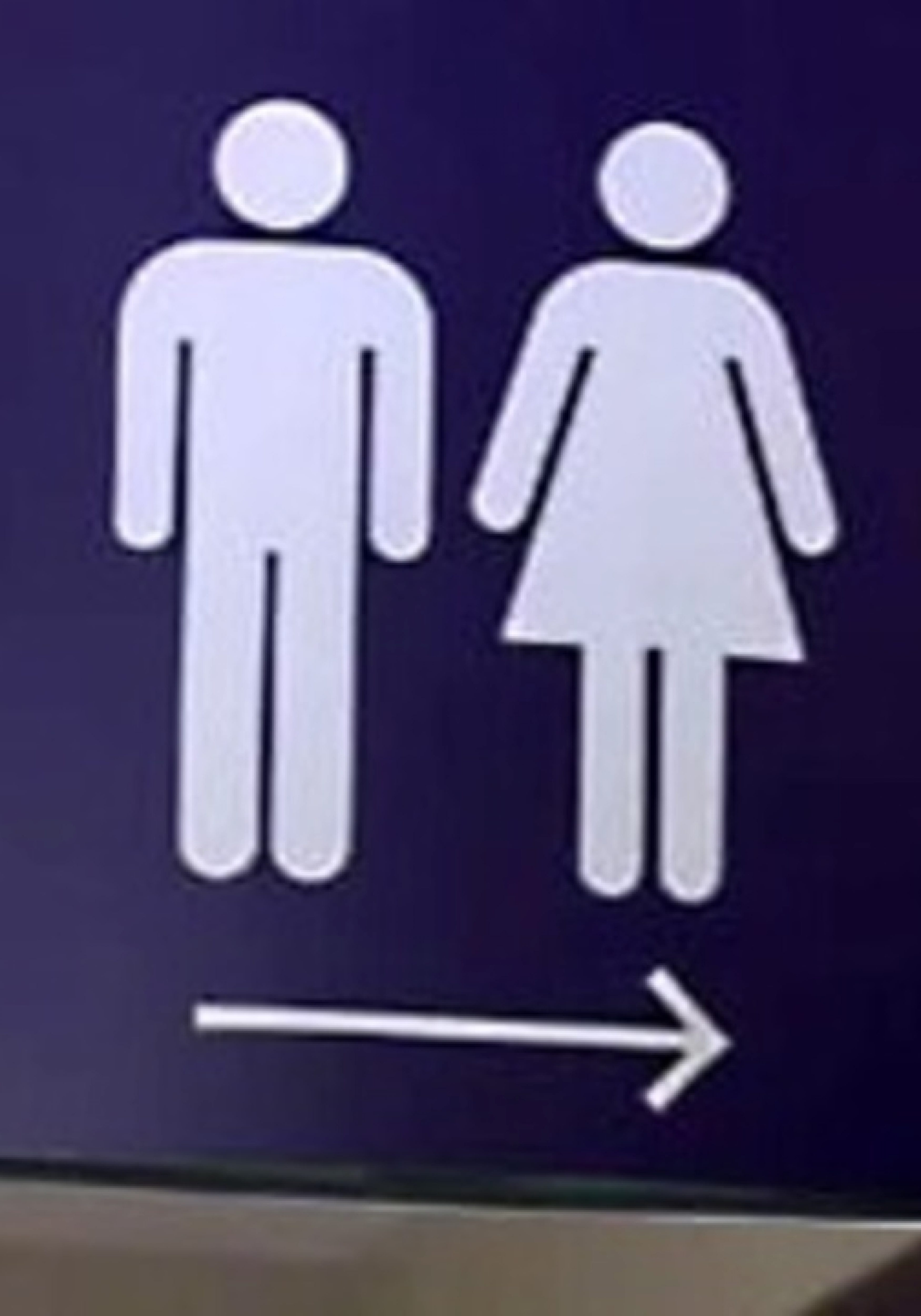Bathroom-sign-JPG_2497930_ver1.0_1280_720-1-3500x5000.jpg