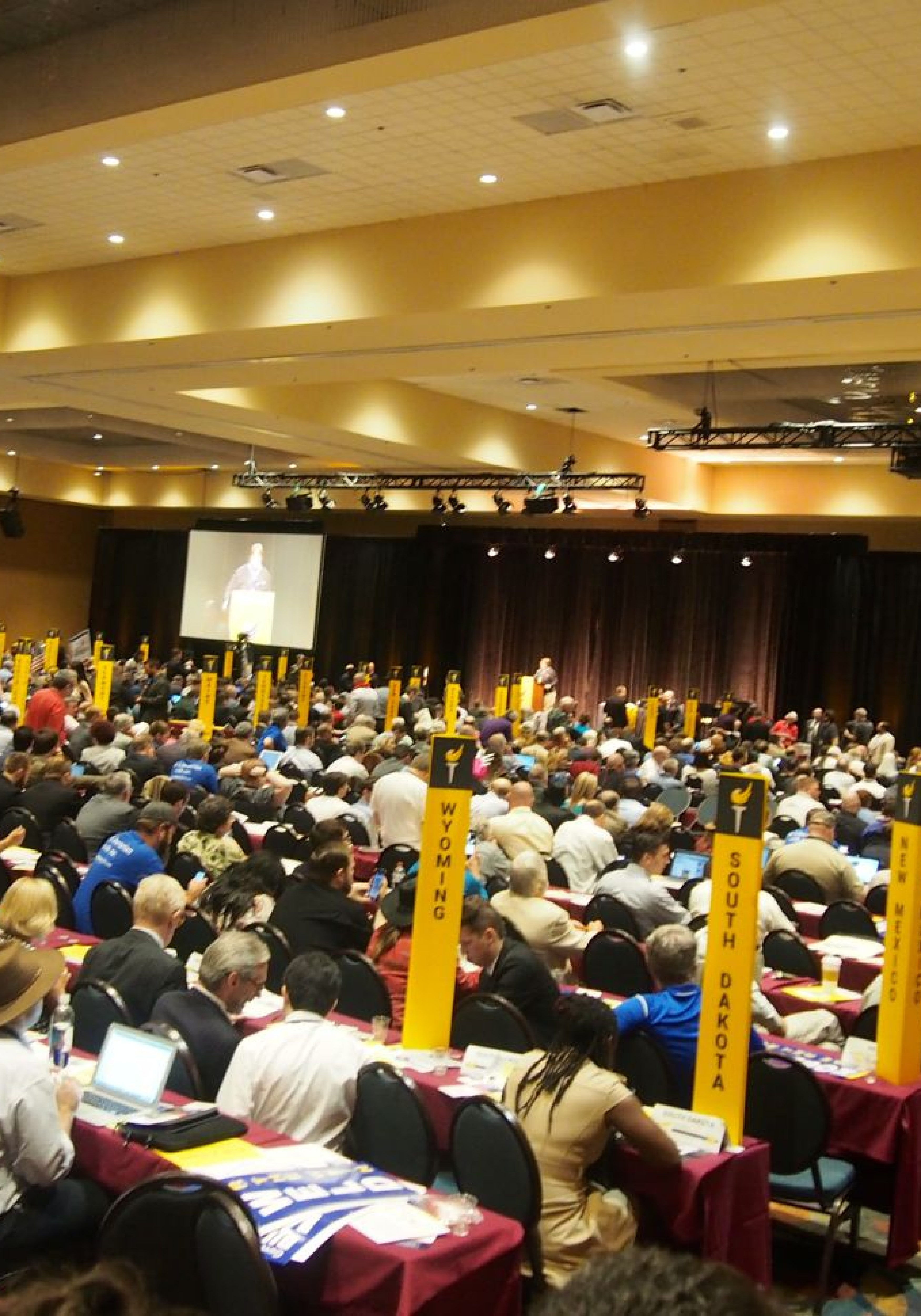 The-Libertarian-National-Conventioon-drew-920-delegates-and-68-alternates.-3500x5000.jpg