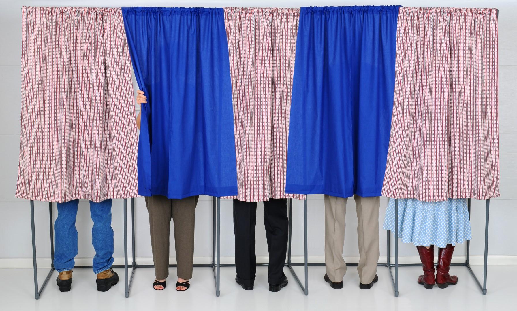 closed primaries (Large)