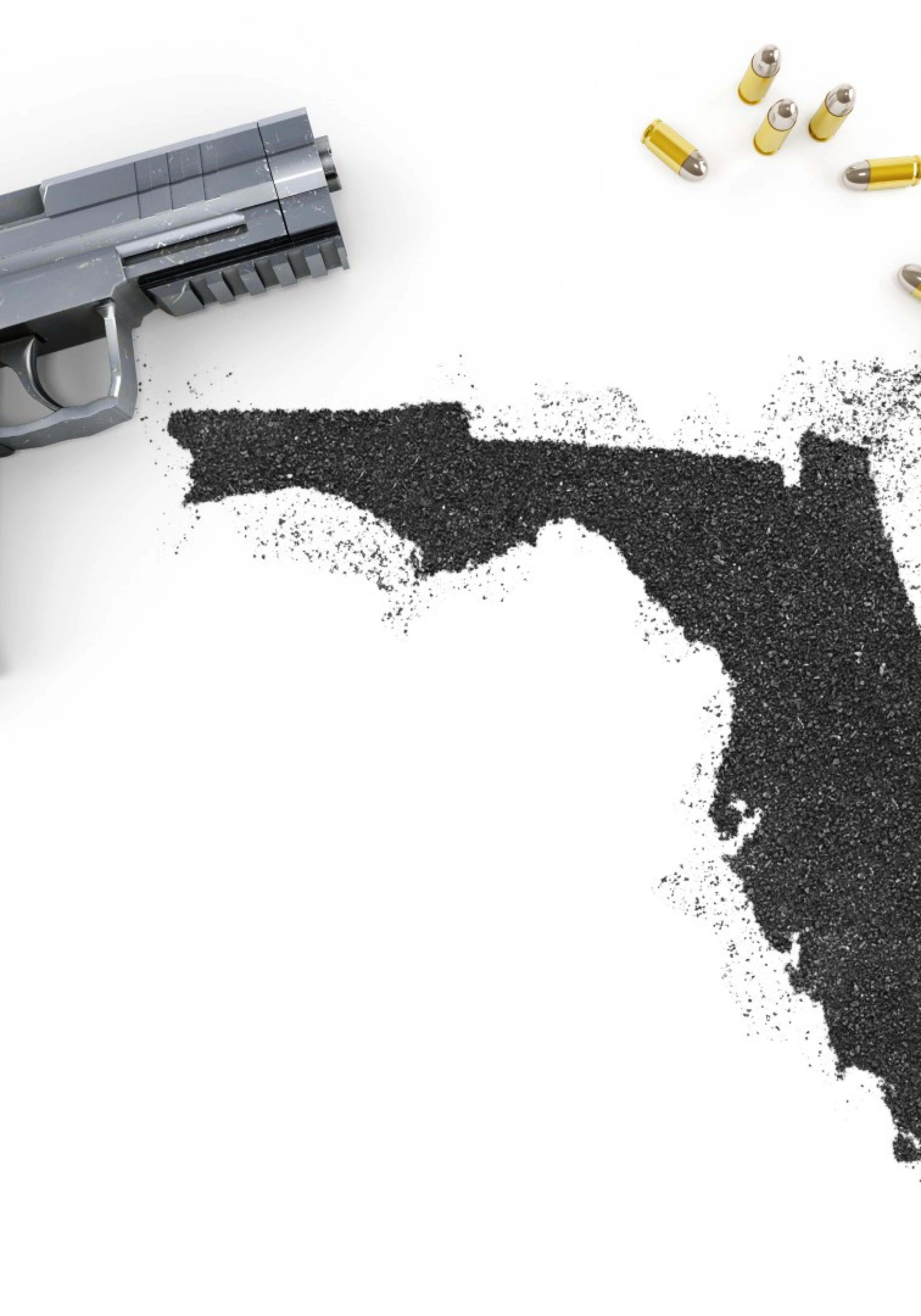 Florida-gun-Large-3500x5000.jpg