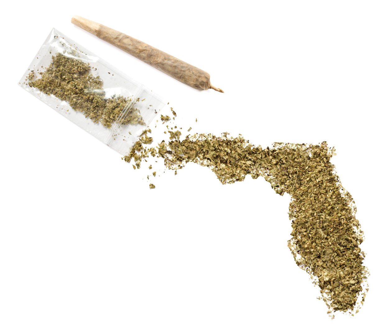 marijuana-florida-2-Large.jpg