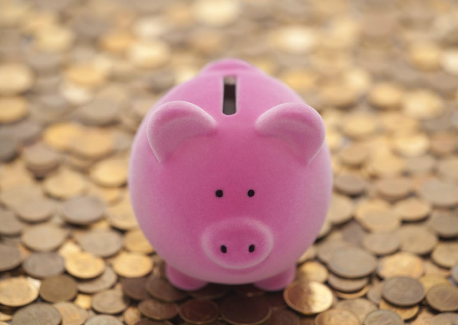 savings (Large)
