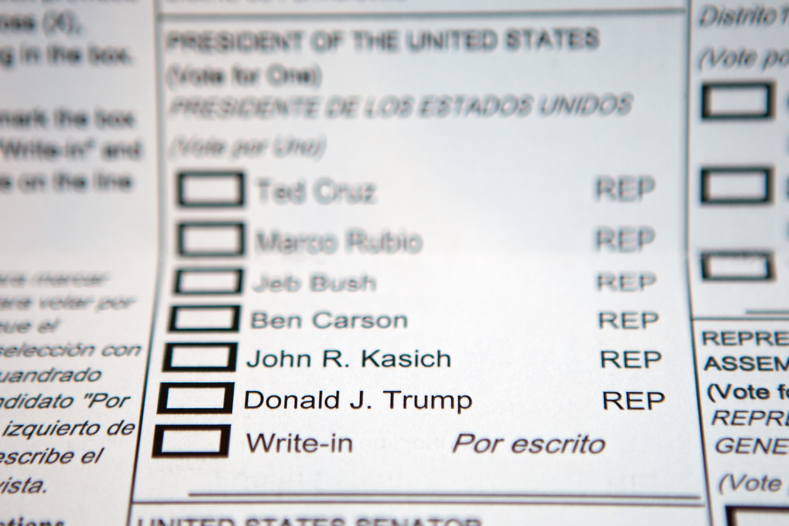 vote ballot (Large)