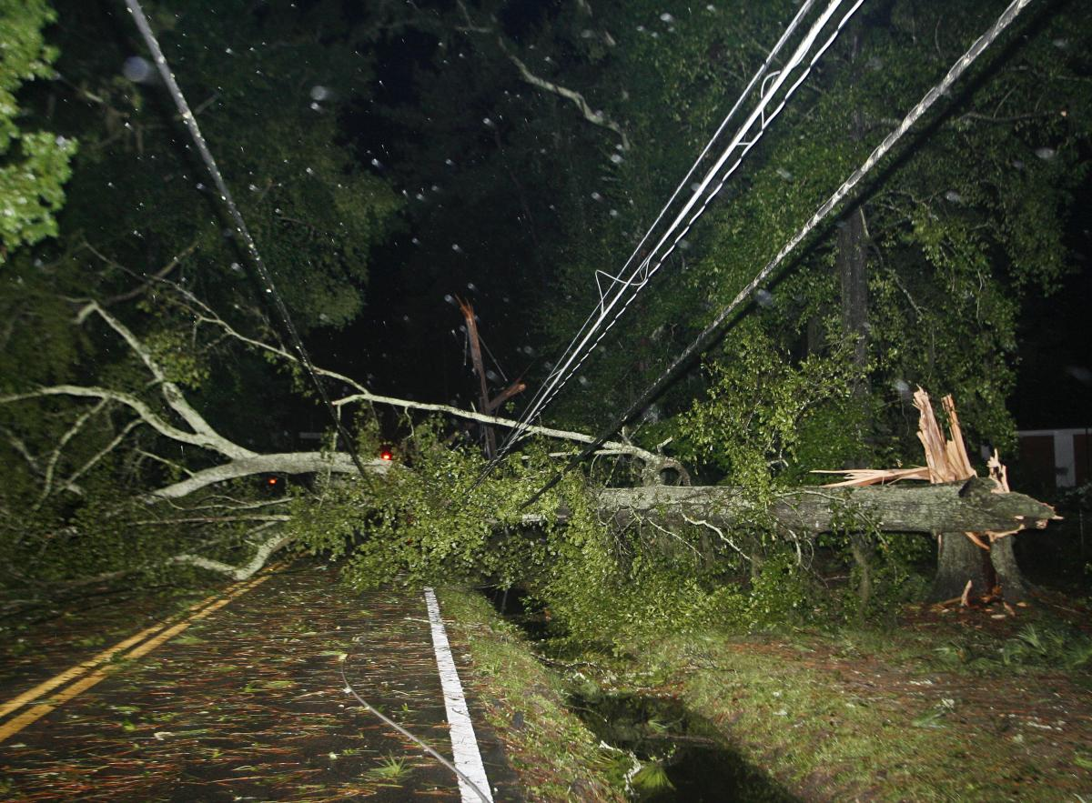 Downed trees and power lines block the road after Hurricane Hermine blows through Tallahassee