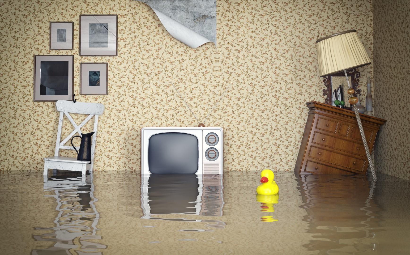 insurance abuse flooding (Large)