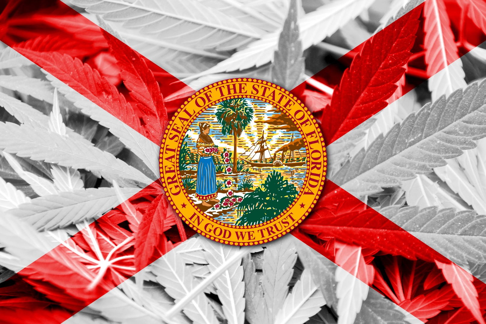 marijuana-florida-large