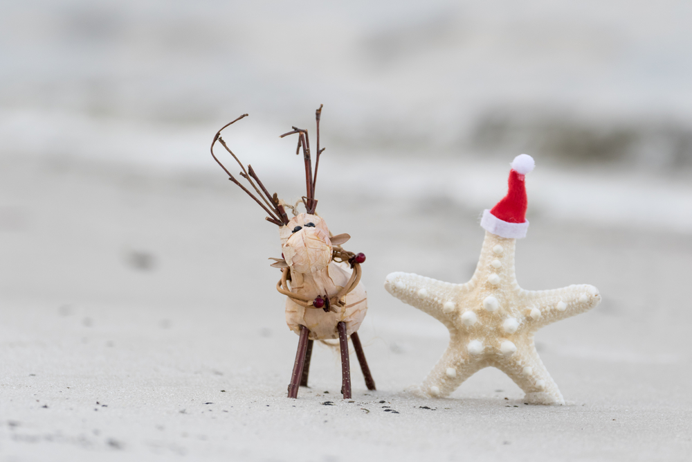 a compilation of christmas messages from floridas elected officials and politicians - Florida Christmas