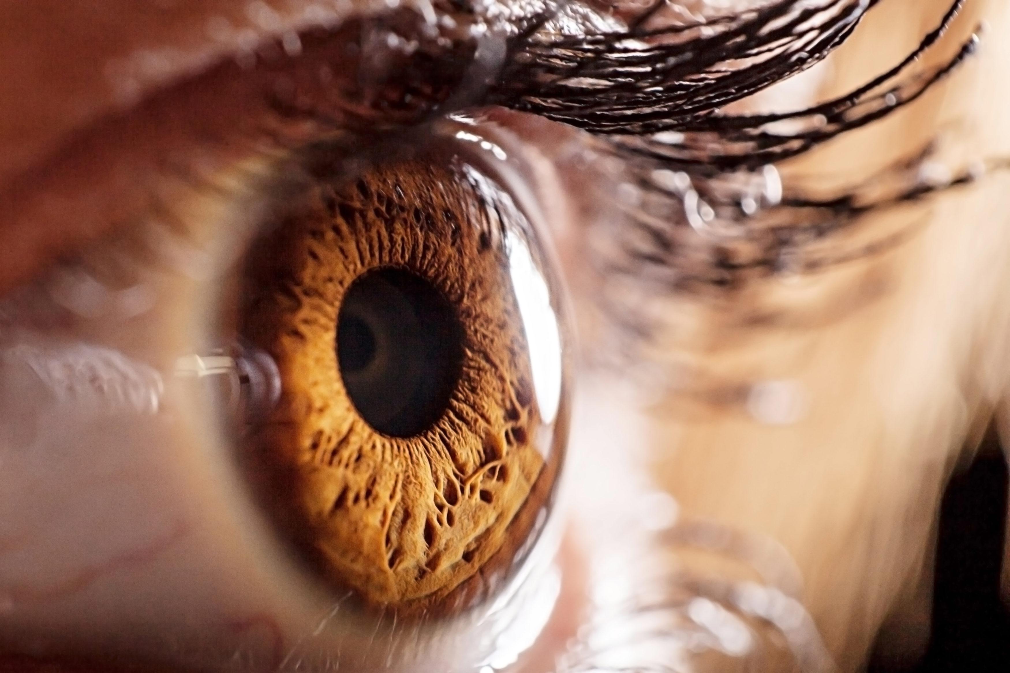 eyeball-01.23.17-3500x2334.jpg