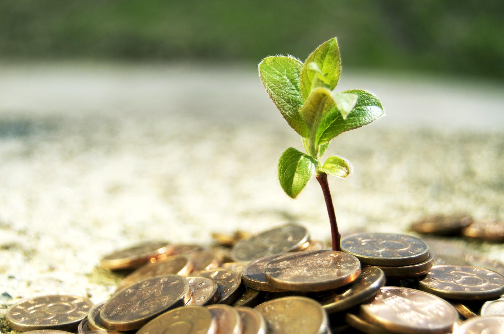 environmental money