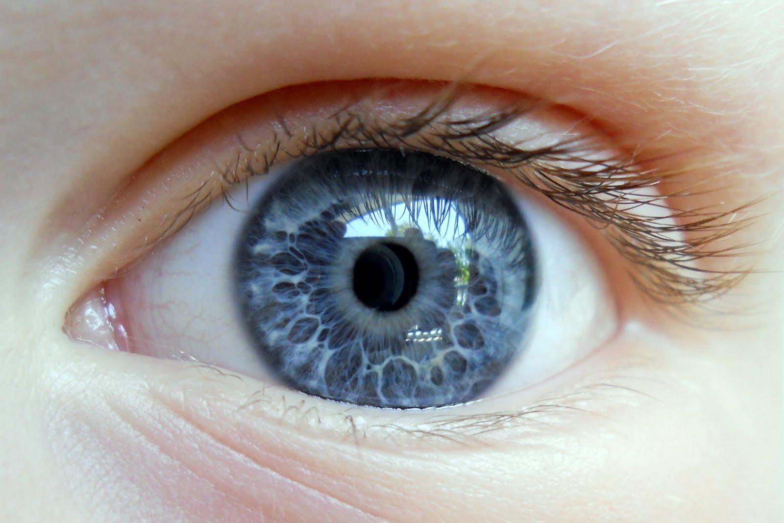 eyeball war
