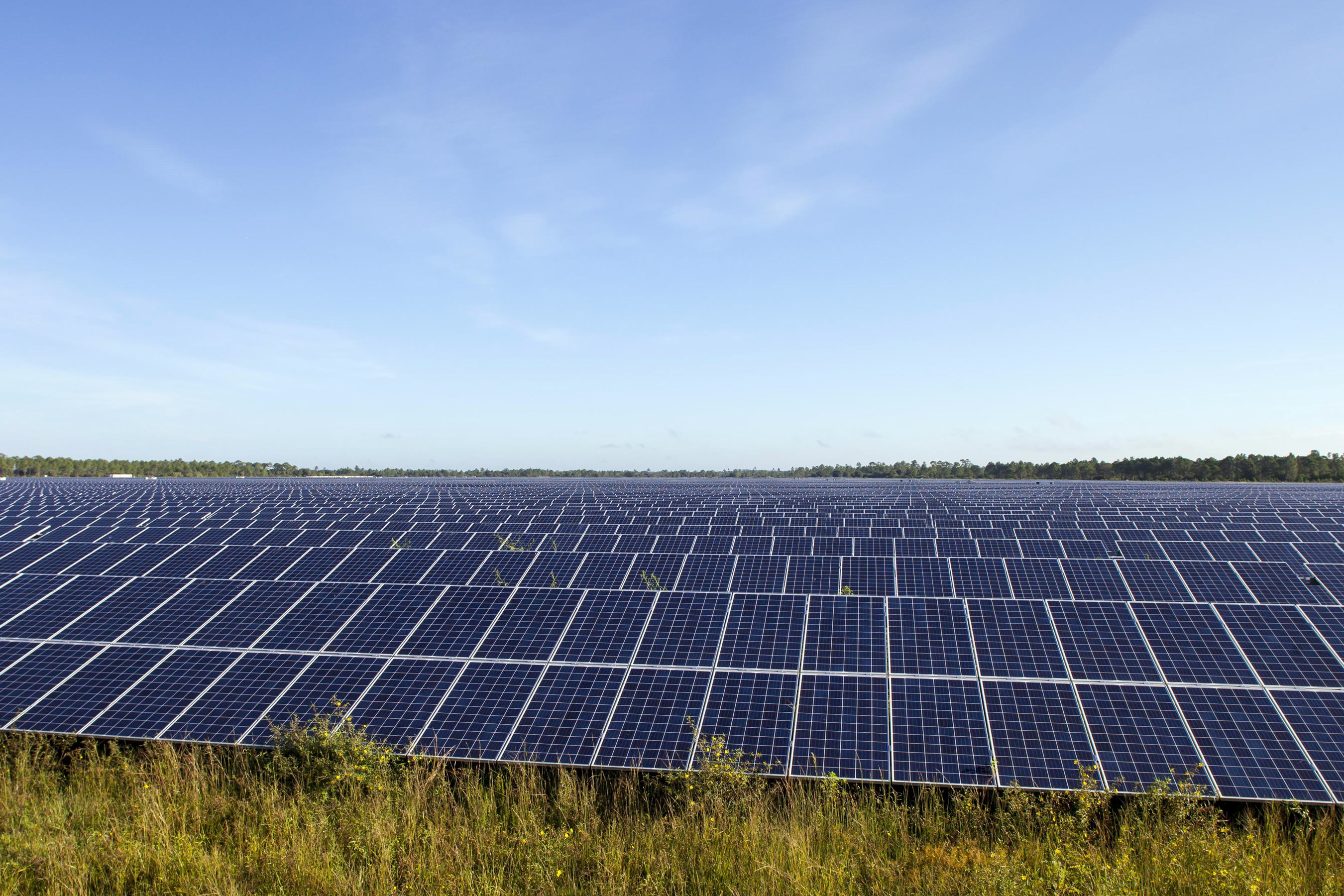 FPL-Babcock-Solar-Energy-Center-Charlotte-County-Fla-1.jpg