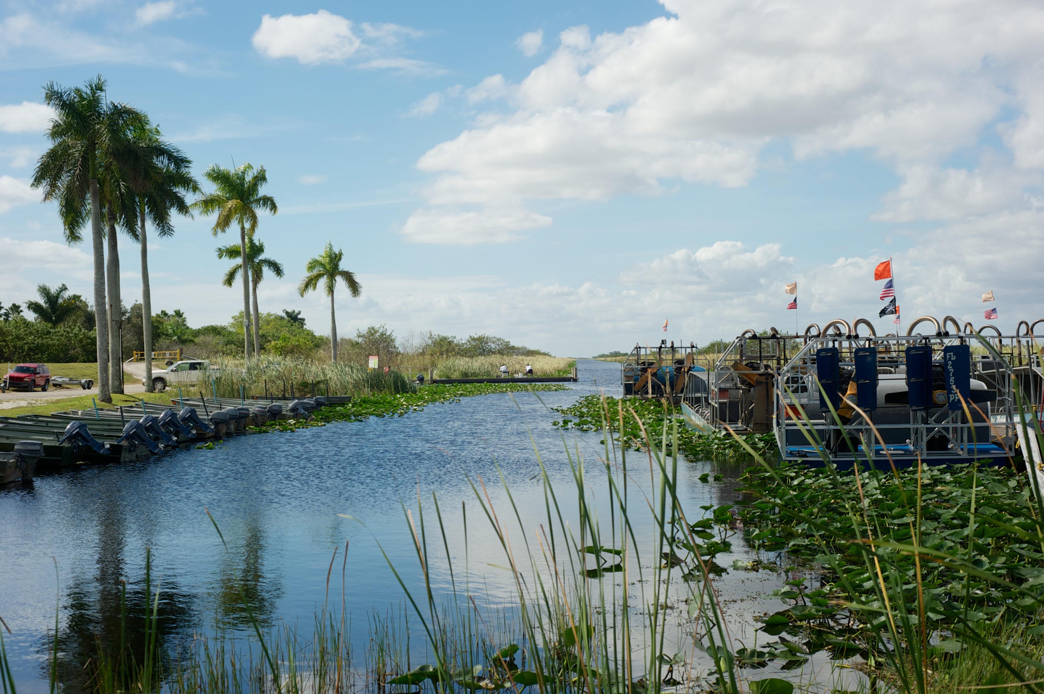 Everglades-3500x2329.jpeg