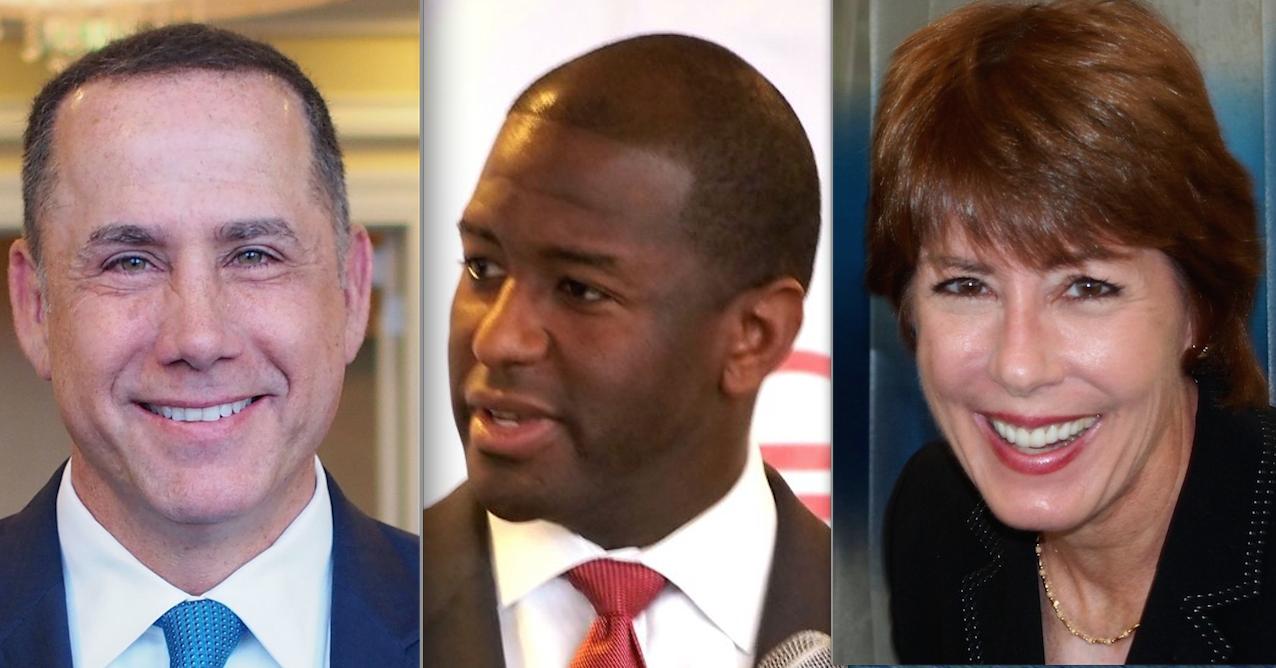 democratic gubernatorial candidates