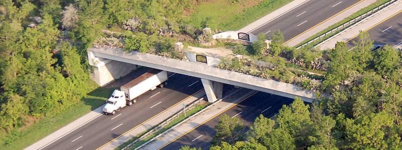 Florida-Greenway-Land-Bridge.jpg