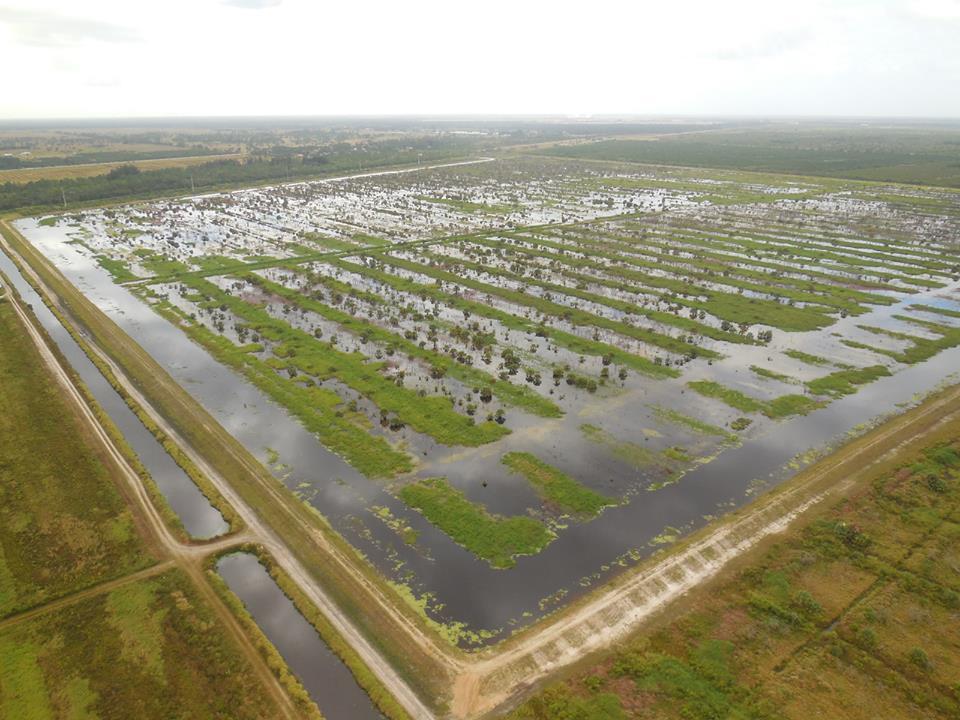 Caulkins Water Farm in Indiantown Florida