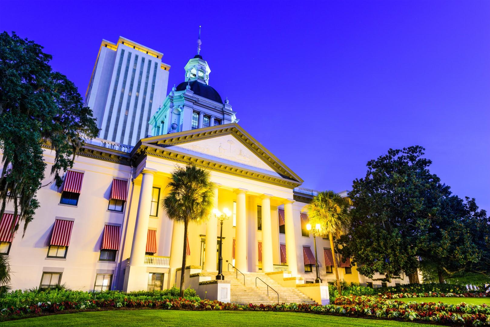 Florida Capitol 2 (Large)