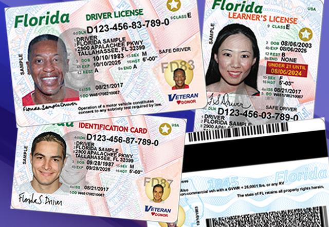 New-Florida-Licenses_1500976290579_63344027_ver1.0_640_480