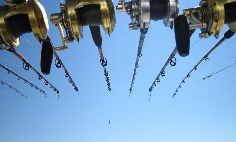 fishing-2301909_1280
