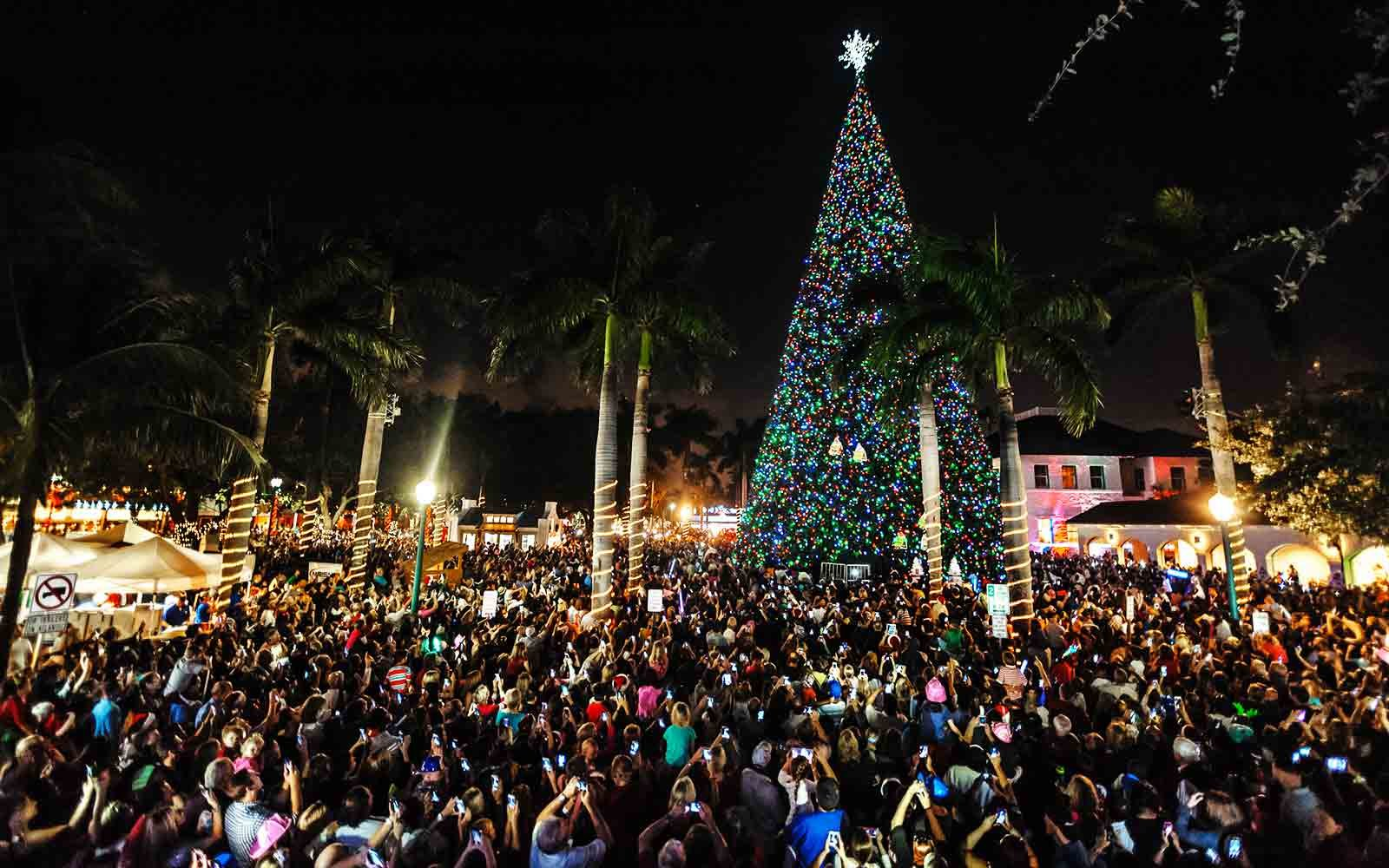 florida-delray-beach-XMASTREE1216.jpg