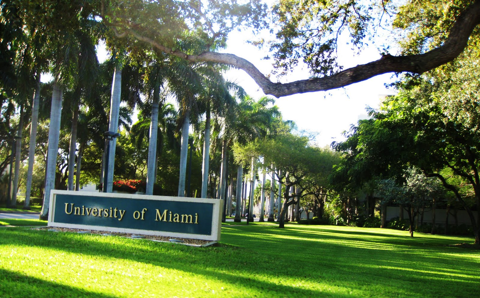 Um Fiu Plans In Place To Reopen This Fall
