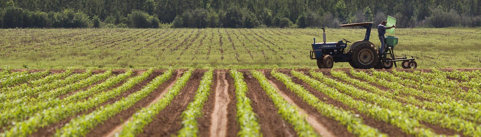 Central-Florida-agriculture-Darren-Soto-op-ed.jpg