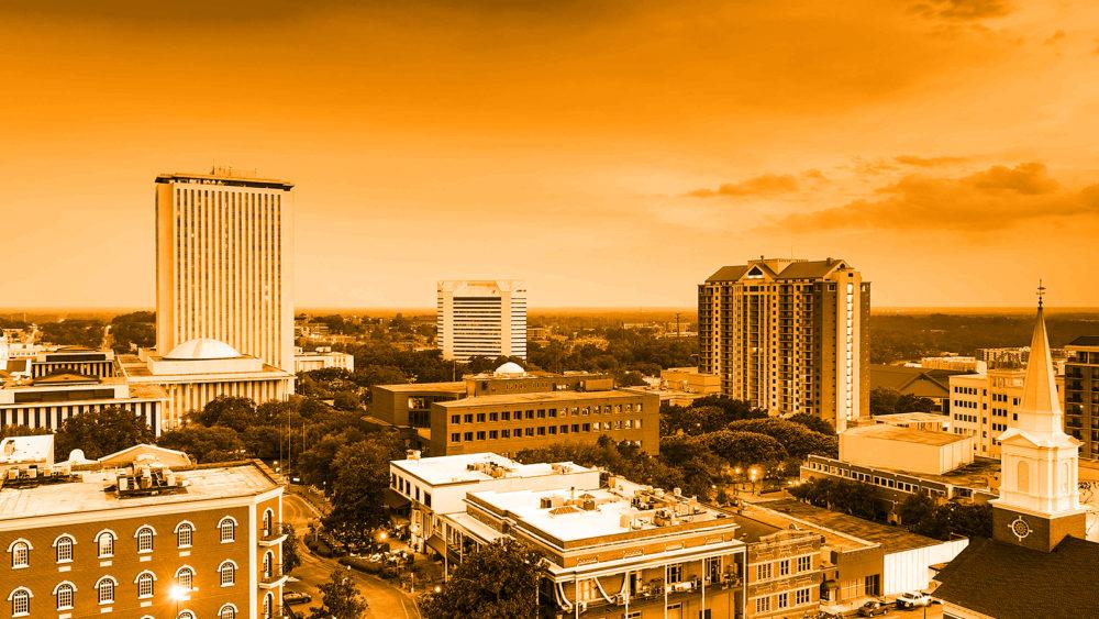Florida Politics Campaigns Elections Lobbying Government