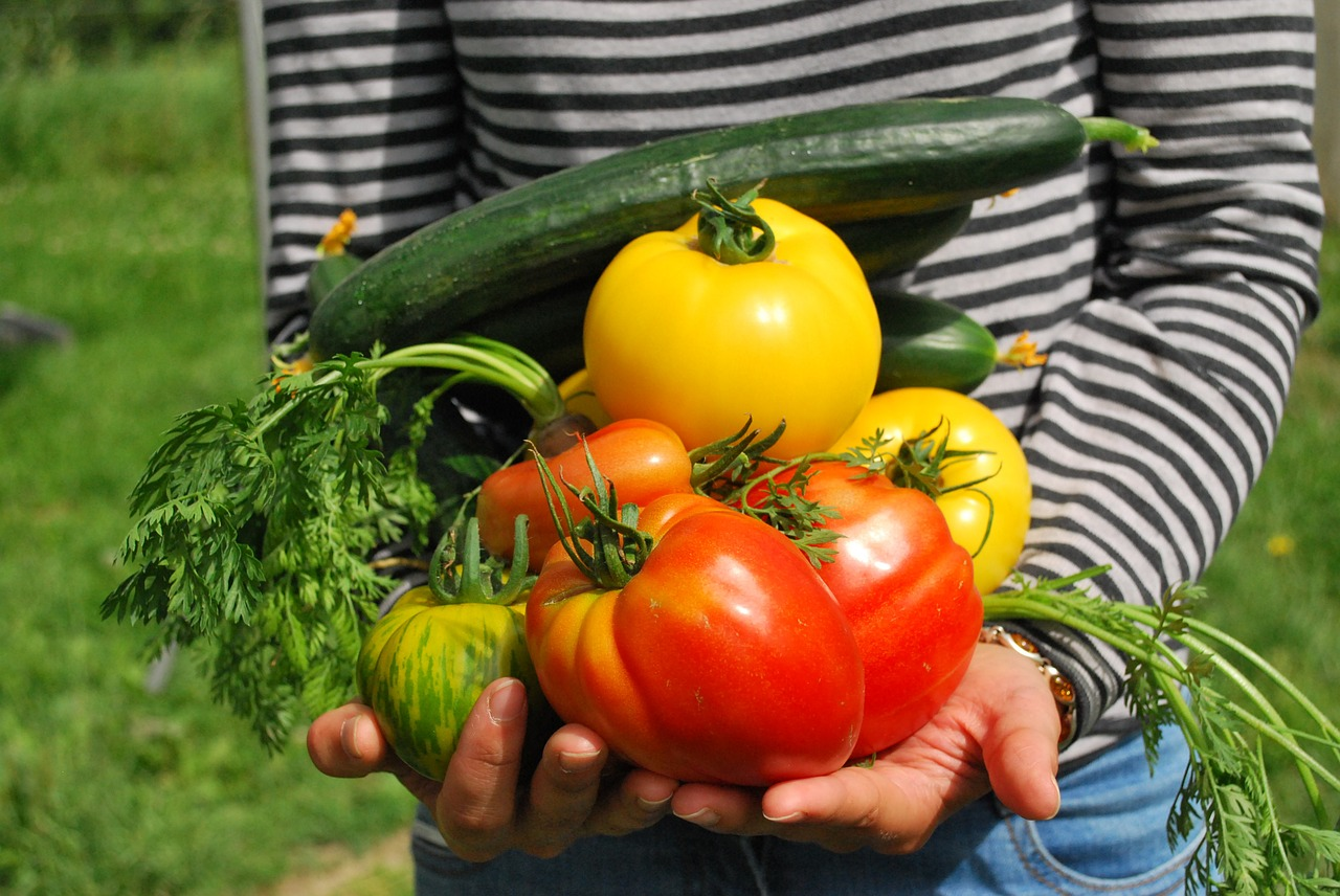 vegetables-742095_1280.jpg