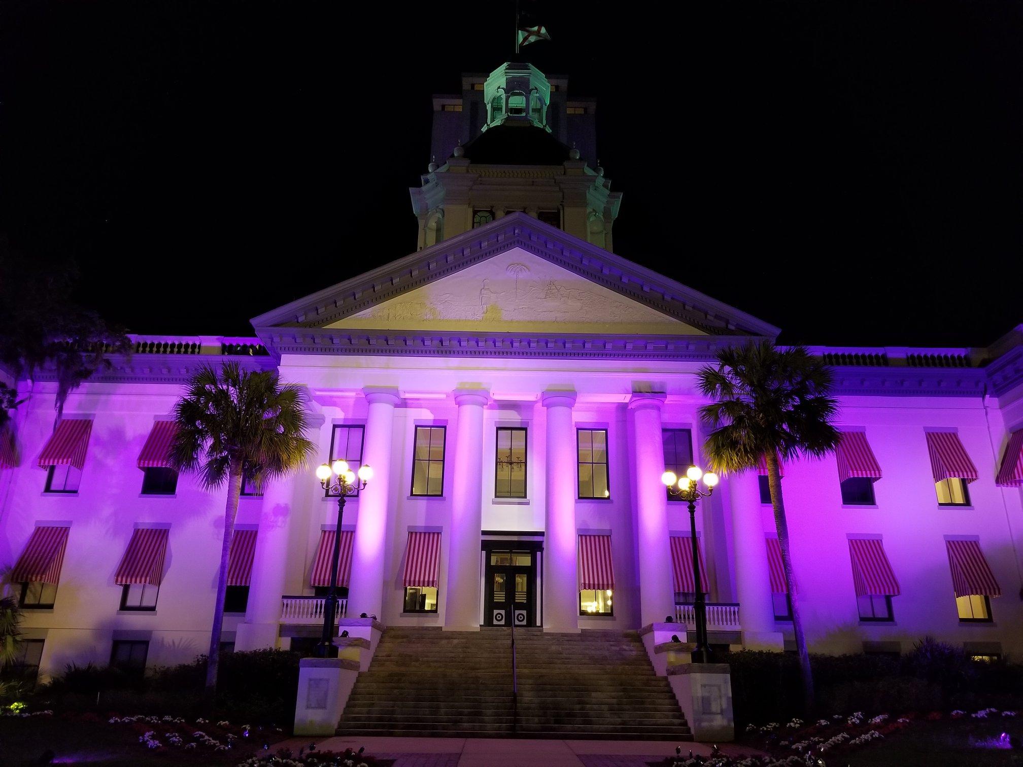 Marcys-Law-purple-capitol.jpg