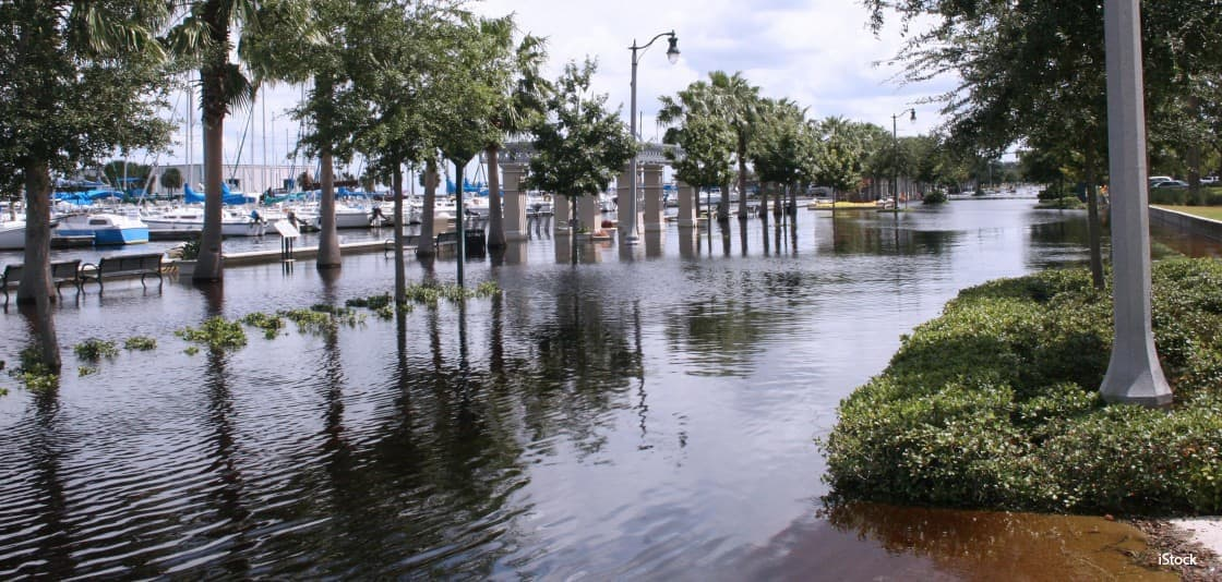 florida-sea-rise-level.jpg
