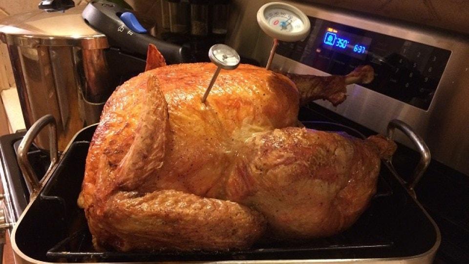 turkey_35338529_ver1.0.jpg