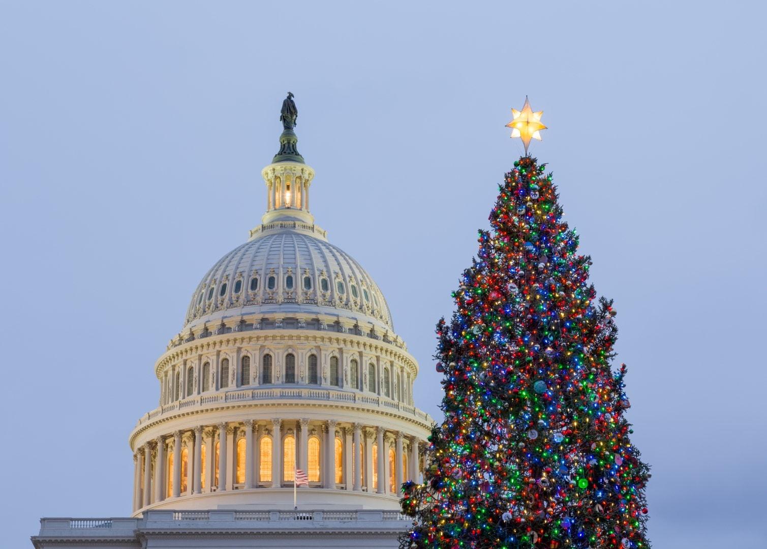 christmas-capitol-hill-Large.jpeg
