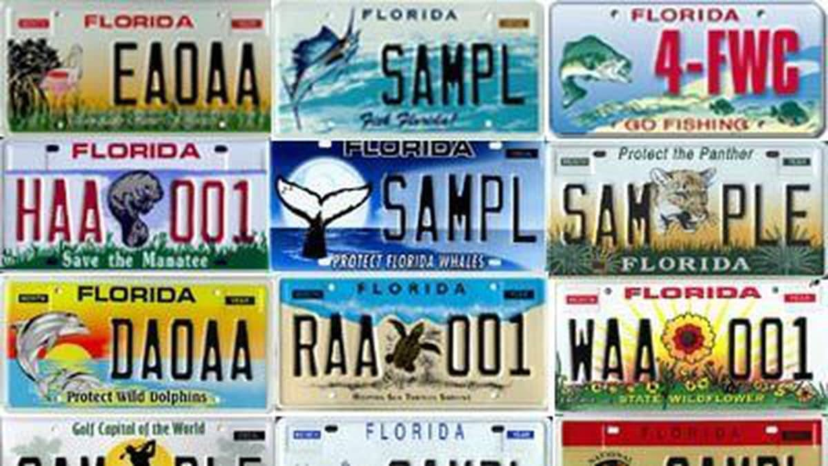Specialty license plate additions OK'd by Senate subcommittee